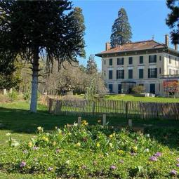 Le parc Montreau, un lieu singulier - Journées du patrimoine