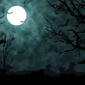 Balade nocturne pour Halloween, contes à faire froid dans le dos