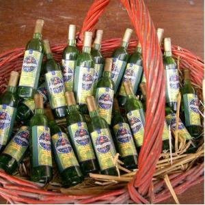 La Confrérie du Clos Saint Vincent présente « le bio dans la vigne et le vin »